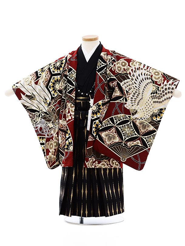 七五三レンタル(3歳男袴)2736蒼 エンジ色小紋鷹x黒ゴールド袴