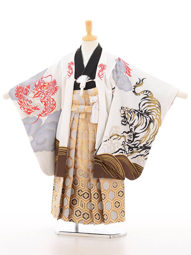 753レンタル(5歳男の子袴)5117花わらべ白虎×金地古典柄袴