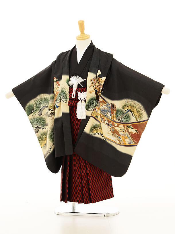 かんたん753レンタル(5歳男の子袴)5128黒兜×矢羽根袴