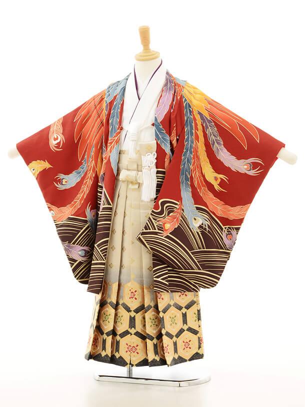 七五三レンタル(5男袴)5129花わらべ赤鳳凰の舞×金地袴