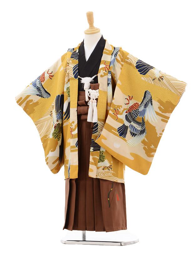 七五三レンタル(5男袴)5135ひいなからし色鷹×茶袴
