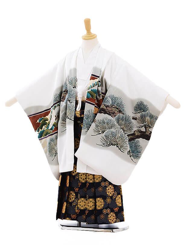 七五三(5歳男袴)5252 白地 松屏風に鷹