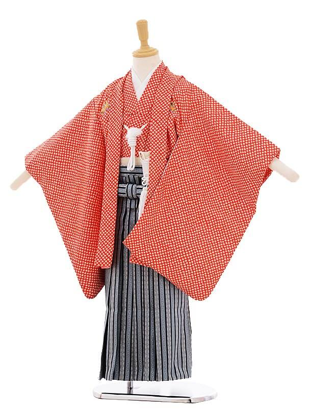 七五三(5歳男の子袴)5269 赤にかぶと紋