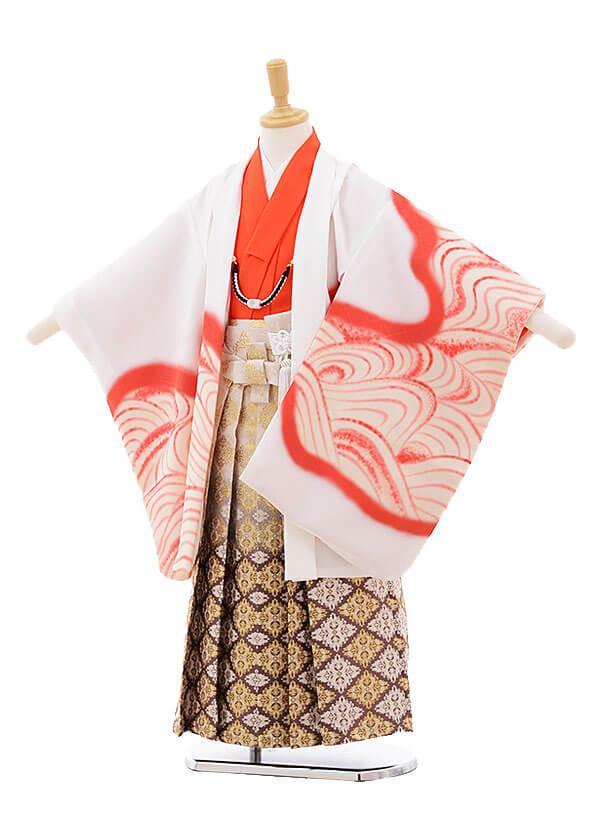 七五三レンタル(5歳男の子袴)5286 花わらべ 白地 虎