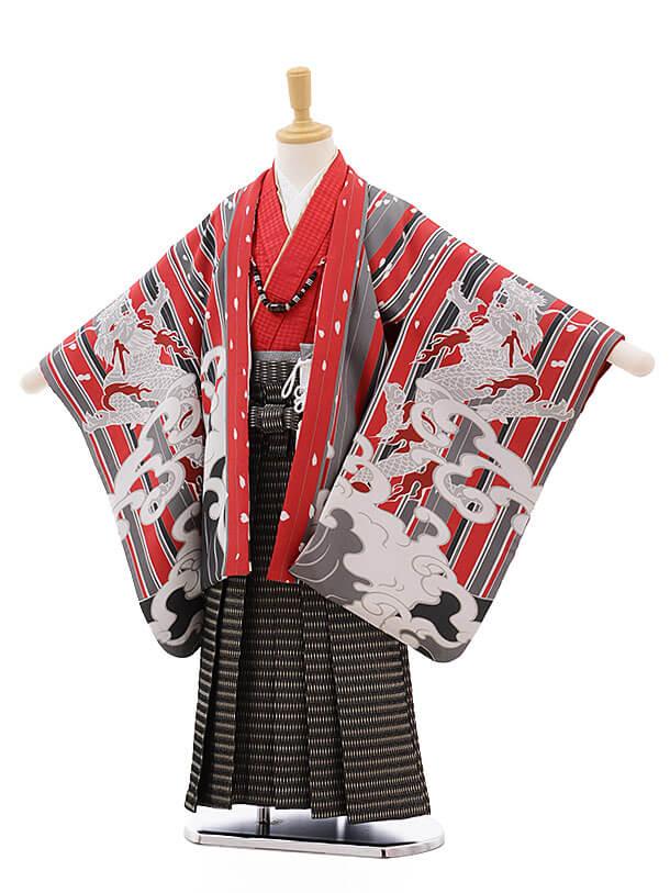 七五三(5男袴)5311 おりびと 赤 ストライプ 波に龍