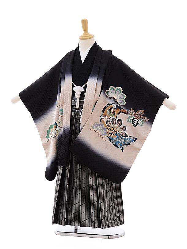 七五三(5男袴)5323 黒地 松に絵巻物(正絹)