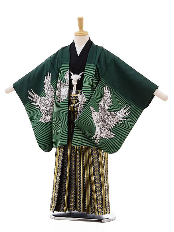 七五三レンタル(5男袴)5334 グリーン地 ゴールド 鷹