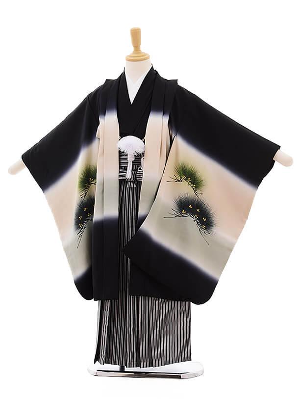 七五三レンタル(5歳男袴)5346 黒地 松に鷹 刺繍 (着物・袴 正絹)