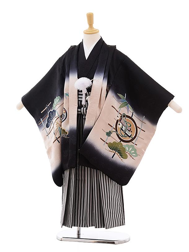七五三(5歳男袴)5378 (正絹)黒地 巻物に鷹 手描友禅×黒縞袴