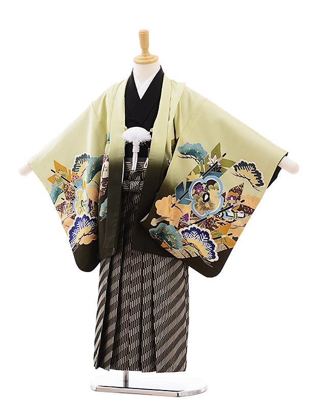 七五三(5.6歳男袴) 正絹 5417 グリーン地 松 矢羽根 鷹×黒袴