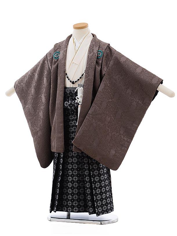 七五三(5歳男児袴)5481 おりびとココアブラウン ラメ 龍×濃灰袴