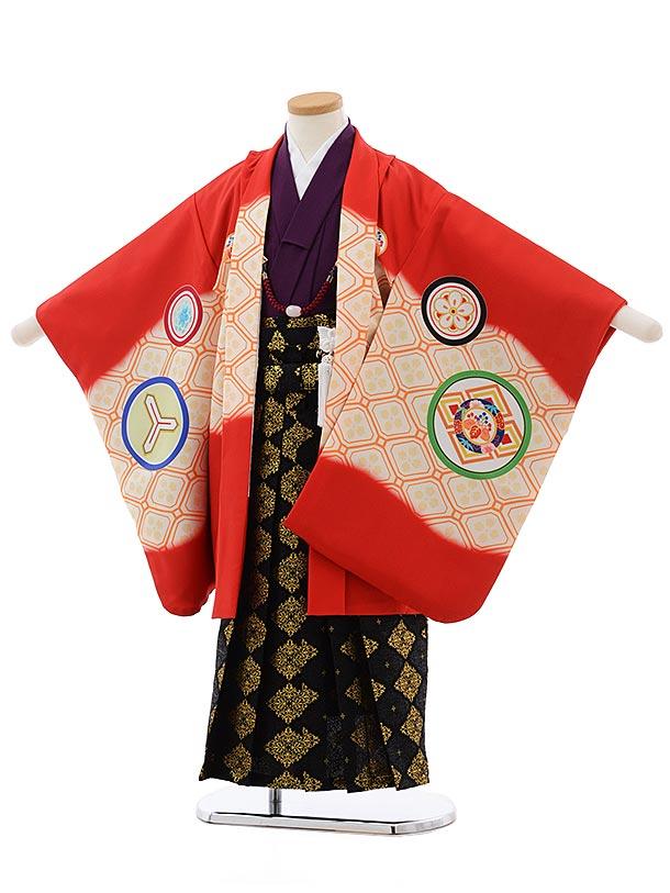七五三レンタル(5歳男児袴)5489 川栄李奈 赤 丸紋×黒地袴