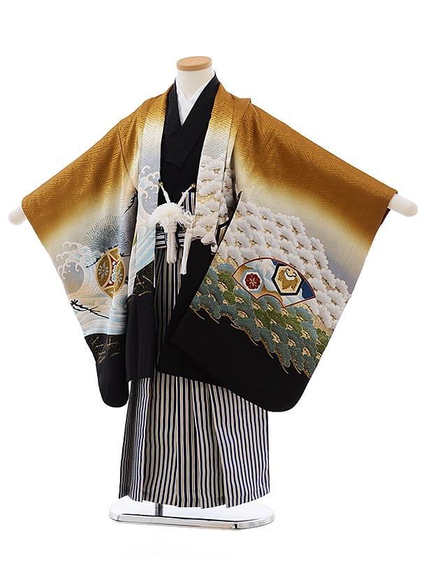七五三(5歳男児袴)5491正絹(着物・袴)金茶ぼかし鷹×紺縞袴