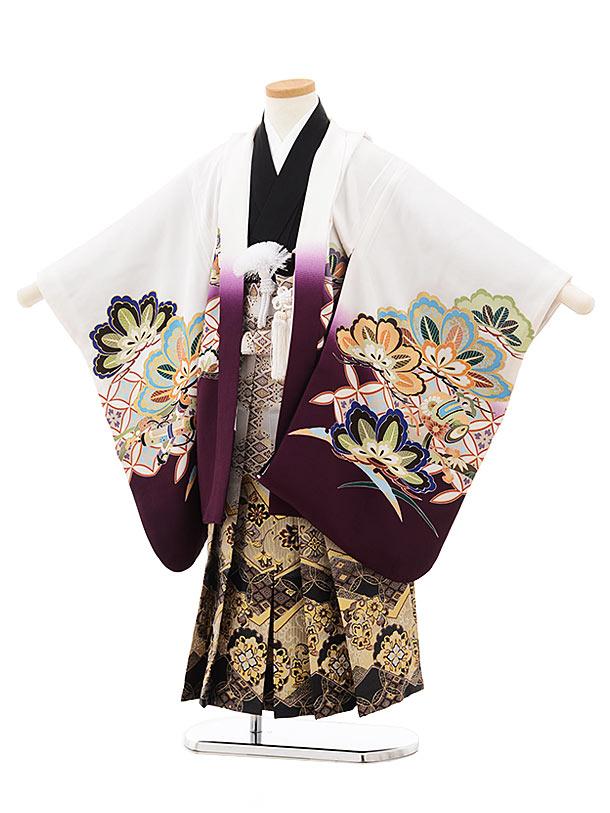 七五三(5歳男児袴)5516白パープルぼかし兜(羽織着物正絹)×灰黒袴