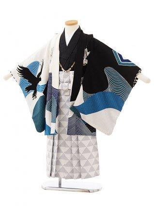 七五三レンタル(5歳男の子袴)5586 黒白鷹×白グレー袴