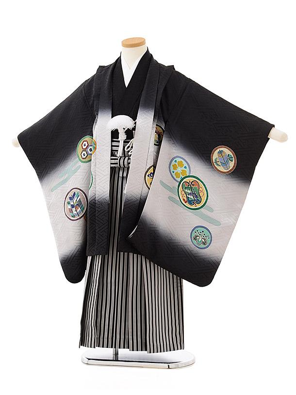 七五三レンタル(5歳男児袴)5596(正絹)黒地ぼかし丸紋×黒白縞袴