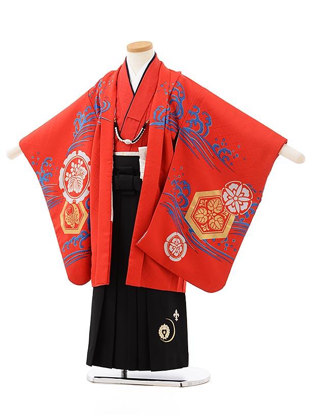 七五三レンタル(5歳男の子袴)5605赤地富士波に鯉×黒袴