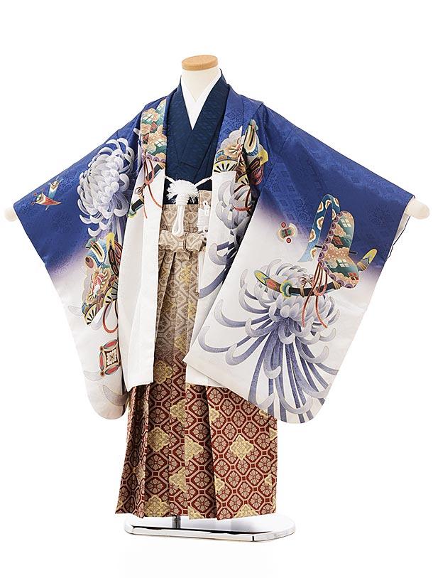 七五三レンタル(5歳男児袴)5661 紺地ぼかし乱菊に鷹×ベージュ赤茶ぼかし菱袴