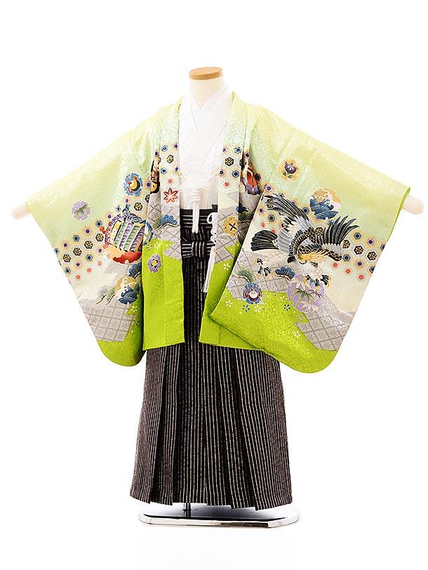 七五三レンタル(5歳男袴)5708ライムグリーン吉祥文様鷹xこげ茶シルバー袴