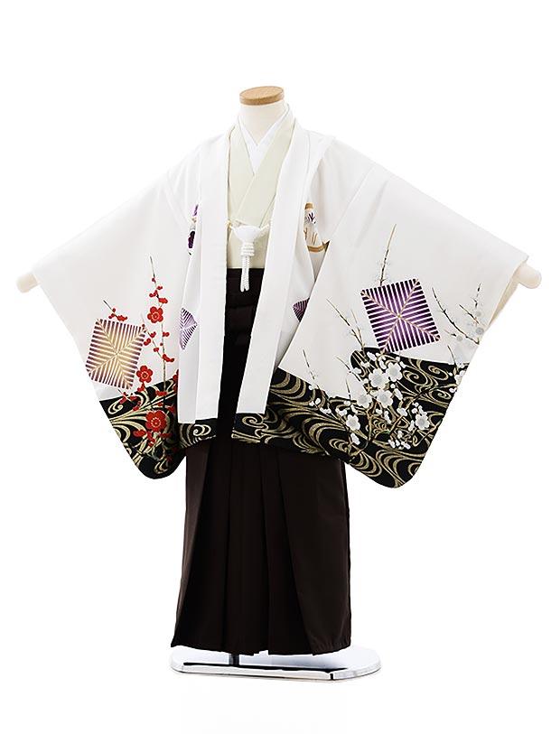 七五三レンタル(5歳男袴)5746白地水面梅鷹xこげ茶袴