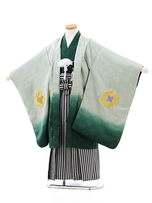 七五三レンタル(5歳男袴)(高級正絹)5816グリーンぼかし刺繍亀甲x黒白縞袴