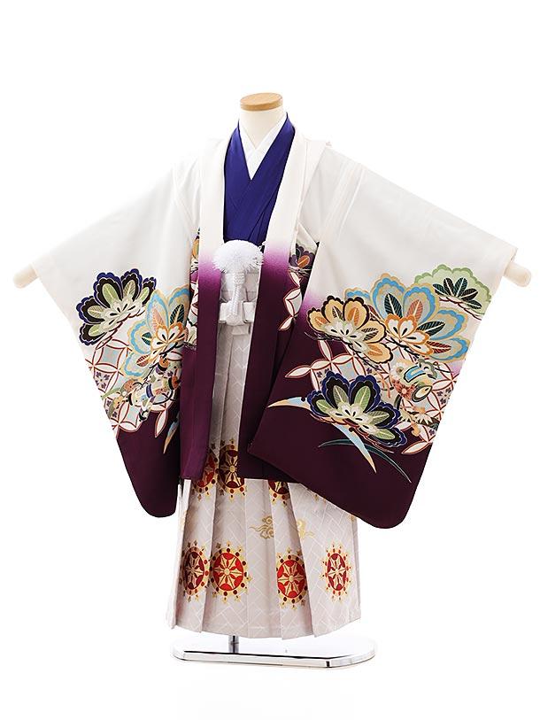 七五三レンタル(5歳男袴)5871白地裾紫かぶとx白赤袴