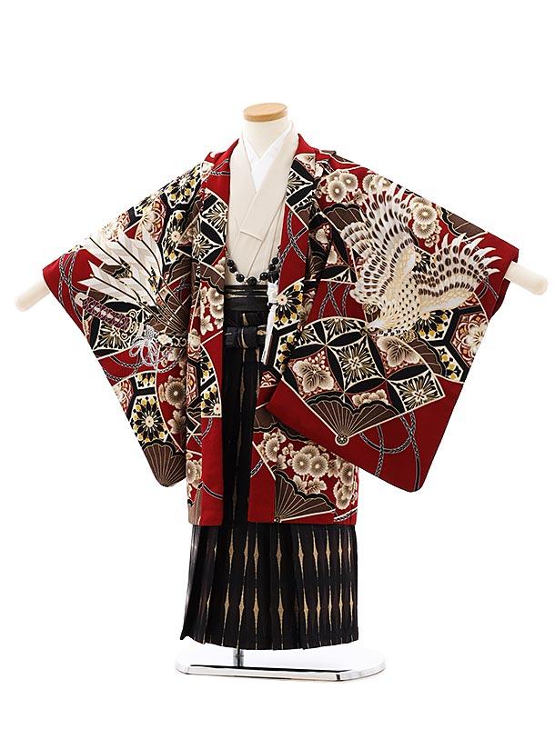 七五三レンタル(5歳男袴)5896蒼 エンジ色小紋鷹x黒ゴールド袴