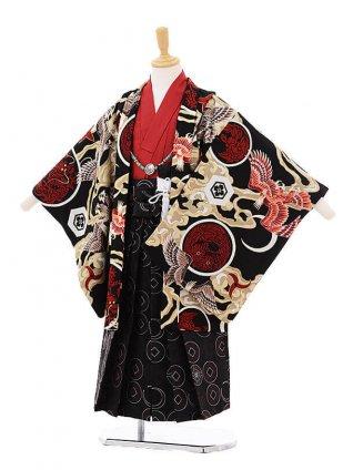 かんたん七五三(5歳男の子袴)5901JAPANSTYLE鷹に丸紋黒×濃茶袴