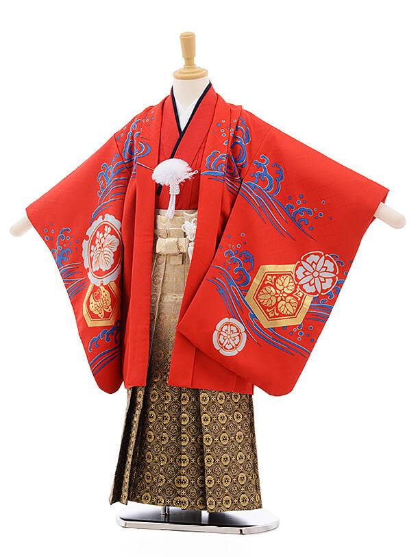 七五三レンタル(5歳男袴)A133 花わらべ 赤地 出世鯉