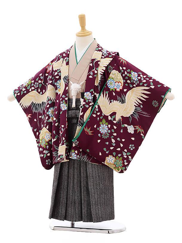 七五三レンタル(5歳男袴)F281 紫地 鶴