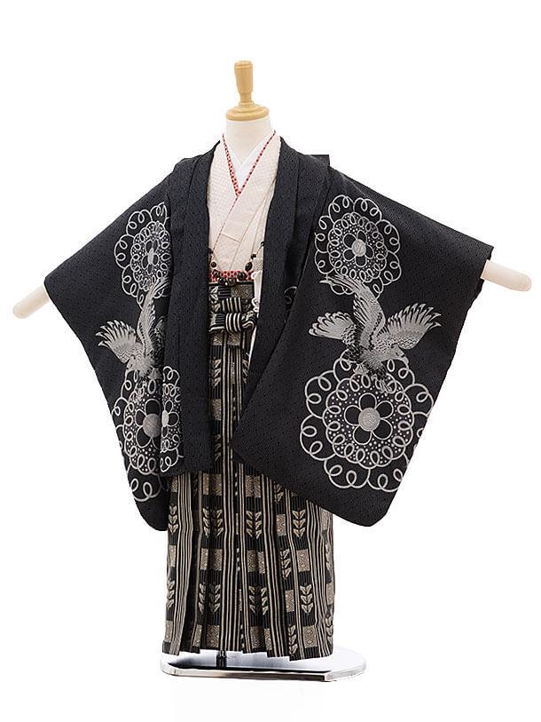 七五三レンタル(5歳男袴)F319 ひさかたろまん 黒 鷹×黒地シルバー縞袴