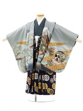 七五三レンタル(3歳男袴)F555グレー地松に鷹と龍x紺丸紋袴