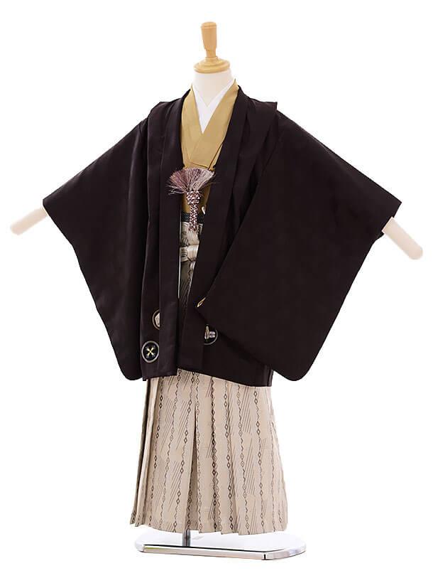 七五三(5歳男袴)I020 ひさかたろまん こげ茶 丸紋