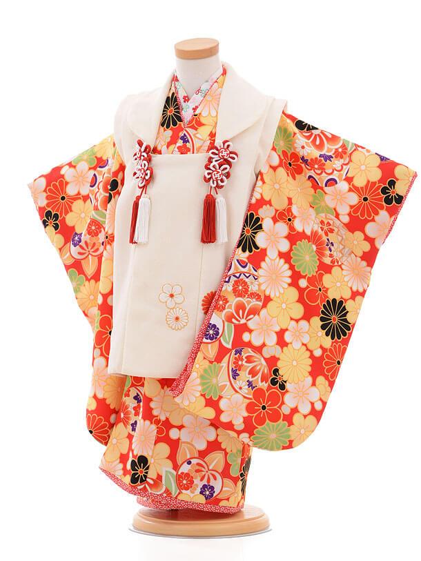 753レンタル(3歳女被布)0389乙葉白×赤菊