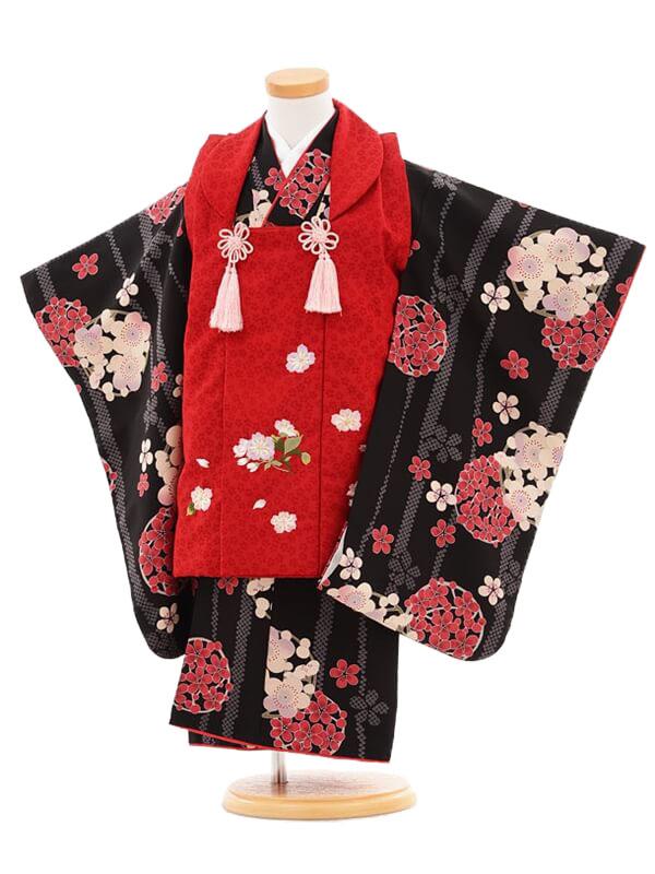 753レンタル(3歳女被布)03109赤×黒刺繍桜