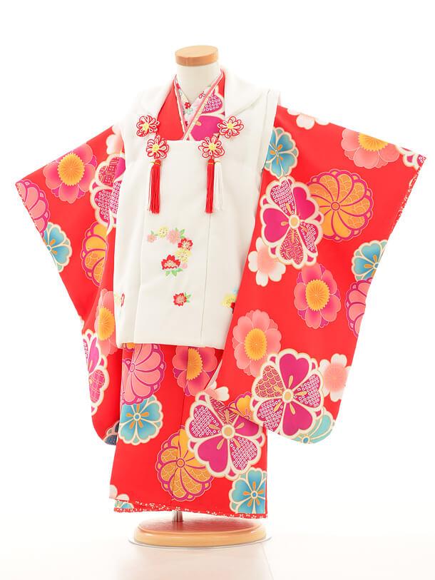 七五三レンタル(3歳女の子被布)3152白×赤花