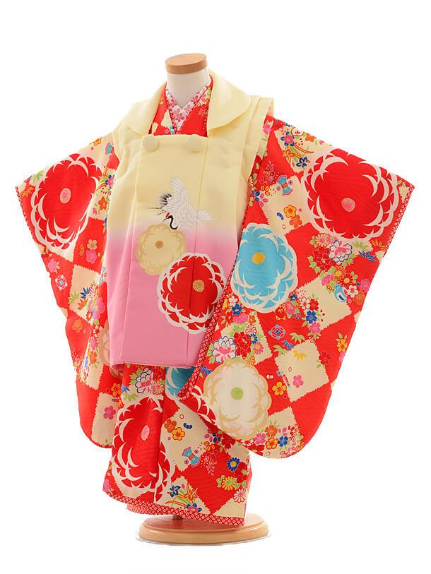 七五三レンタル(3歳女の子被布)3180JAPANSTYLE菊に鶴