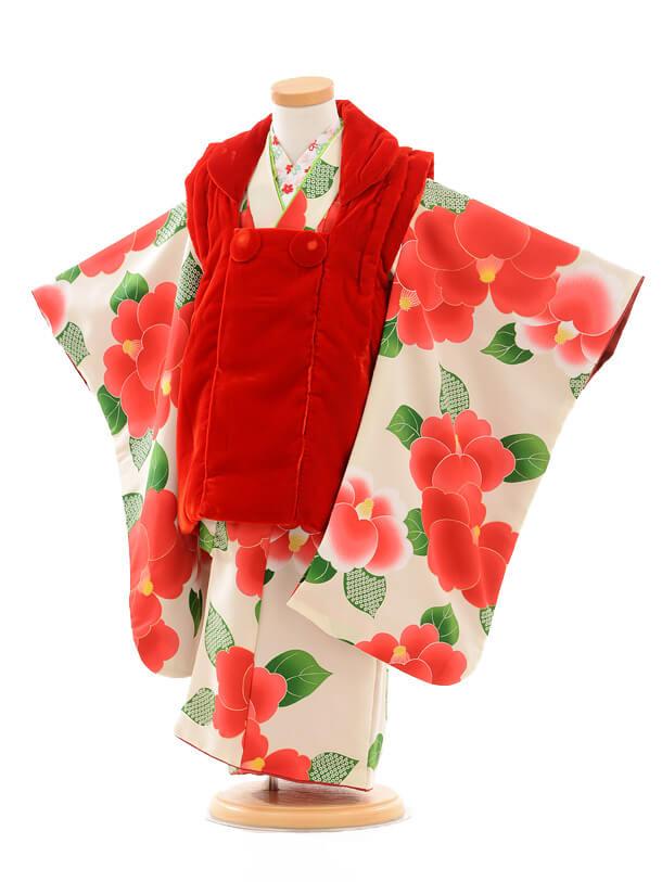 七五三(3歳女被布)3255赤ベルベット×白椿