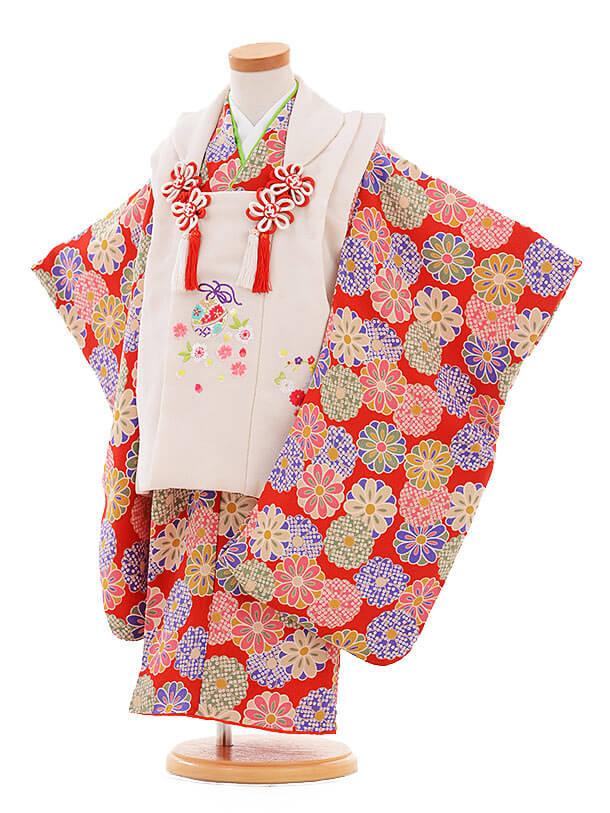 七五三レンタル(3歳女の子被布)3328 白×赤 ちりめん 菊