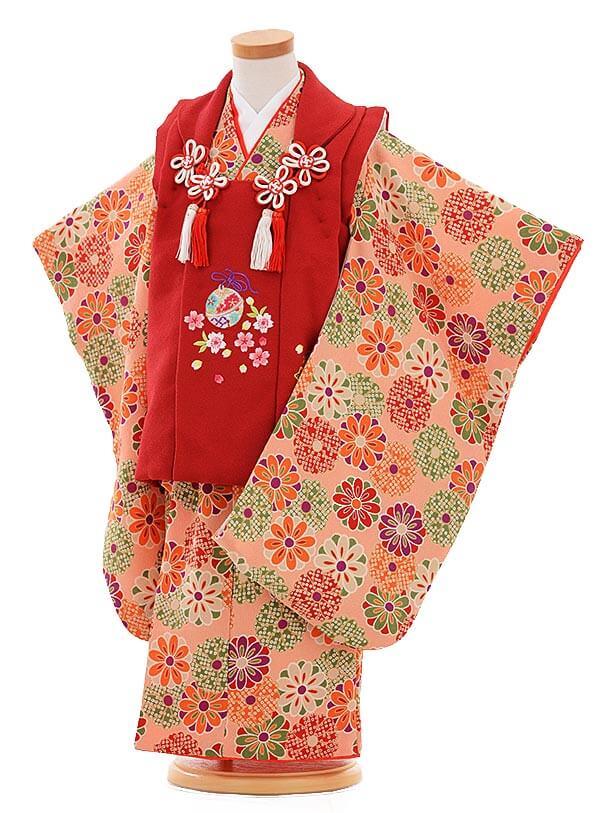 七五三レンタル(3歳女の子被布)3333 赤×ピンク ちりめん 菊