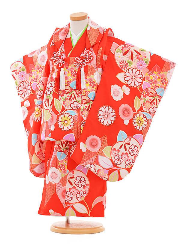 七五三レンタル(3歳女の子被布)3346 赤地 橘に菊