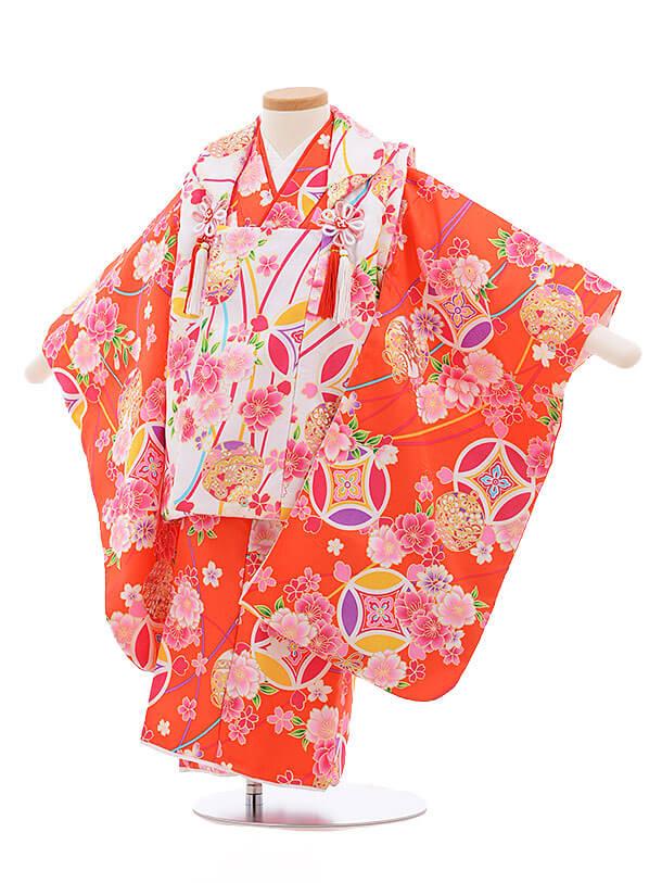 七五三レンタル(3歳女被布)3379 白×オレンジ 桜に鈴