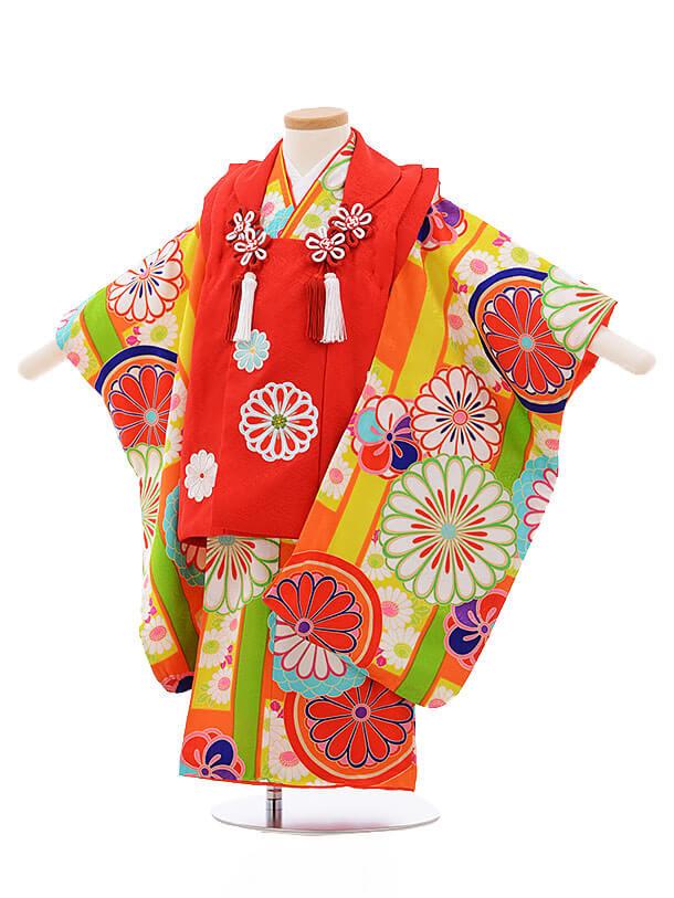 七五三レンタル(3歳女被布)3391 紅一点 赤×オレンジ地 菊