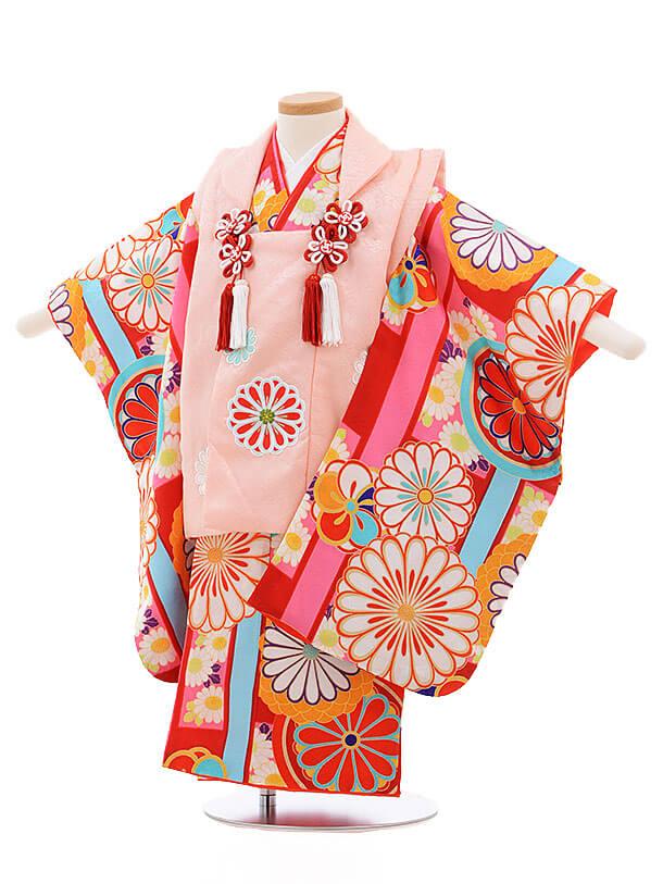 七五三レンタル(3歳女被布)3392 紅一点 ピンク×赤地 菊