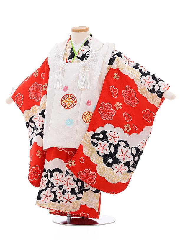 七五三レンタル(3歳女被布)3403 白×赤地 雲取り 桜