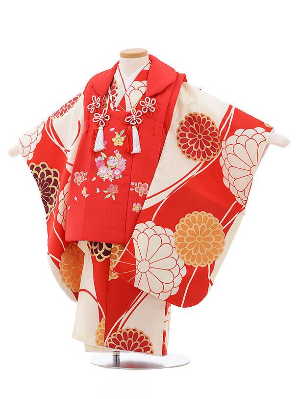 七五三レンタル(3歳女被布)3414 赤×赤地 菊