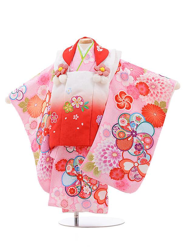 七五三レンタル(2歳女被布)3460 白ぼかし×ピンク ねじり梅