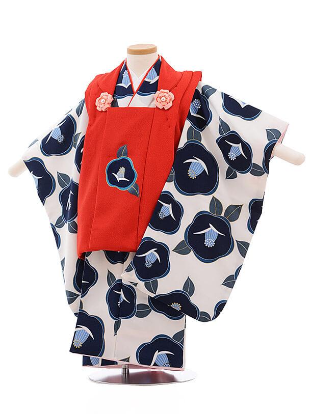 七五三レンタル(3歳女被布)3488 赤×白地 紺椿
