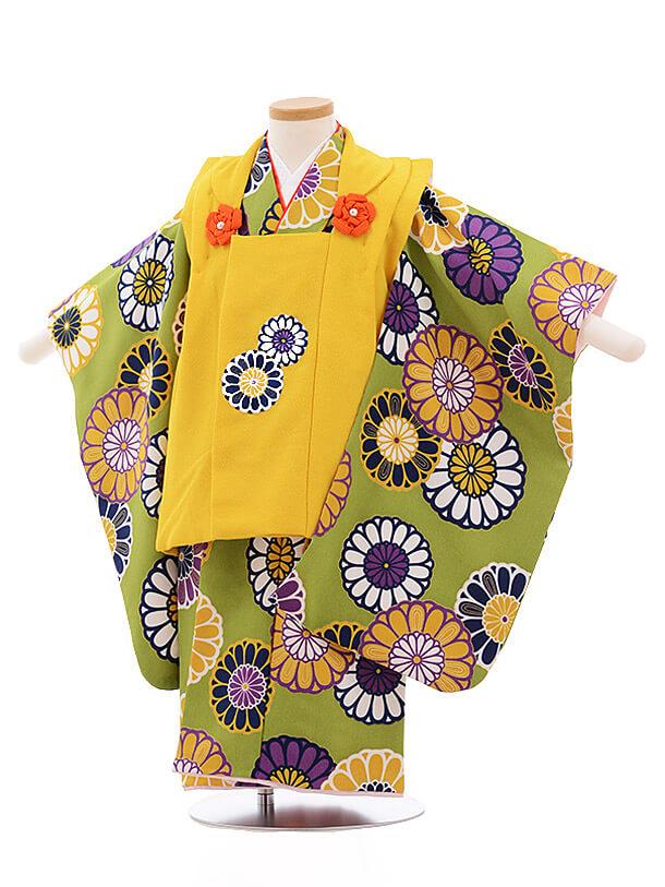七五三レンタル(3歳女被布)3490 からし色×グリーン地 菊