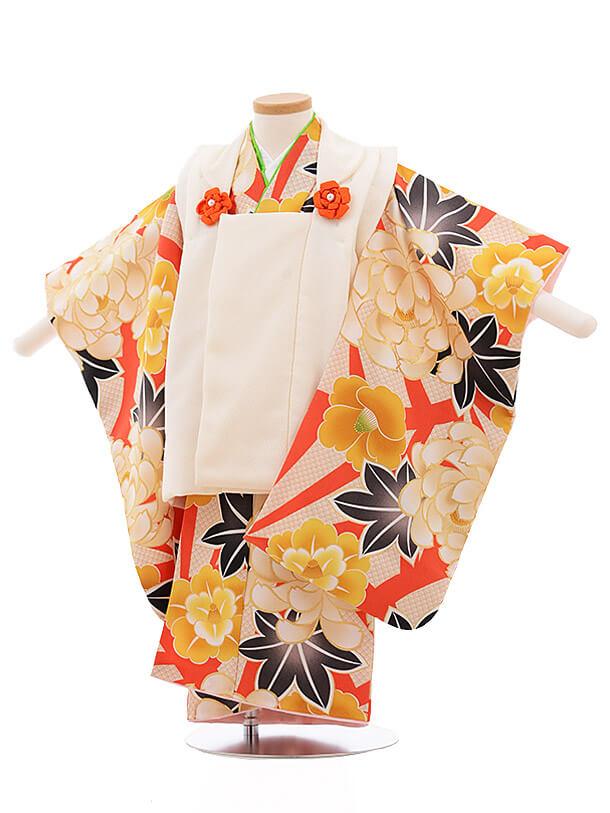 七五三レンタル(3歳女被布)3495 白×オレンジ色地 牡丹椿
